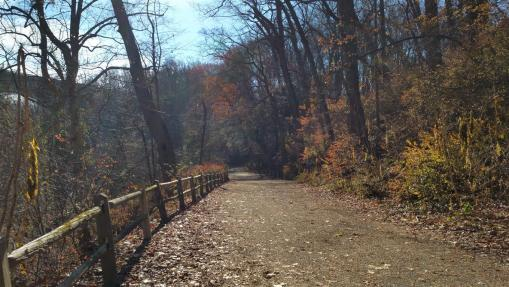 Wissahickon Trails in the Fall