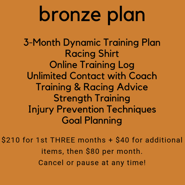 Bronze Training Plan