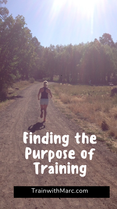 Finding the purpose of training: what's the point?