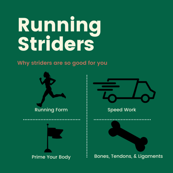 Striders are so good for yo as a runner. Here's how to get them done.